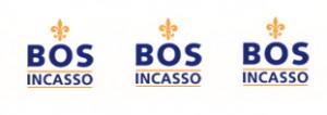 logo_bosincasso